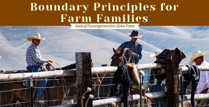 Boundary Principles for Farm Families