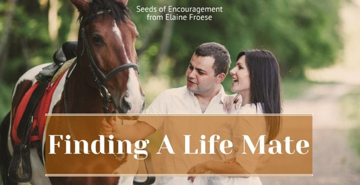 Finding A Life Mate - healthy marriage