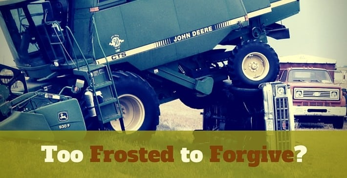 Too Frosted to Forgive
