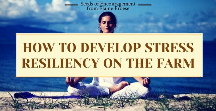 How to Develop Stress Resiliency on the Farm