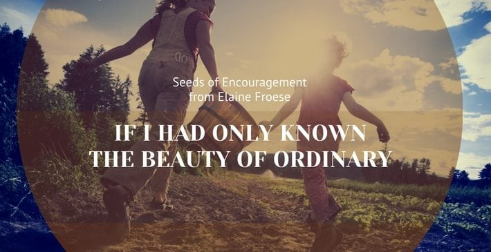 If I Had Only Know the Beauty in Ordinary