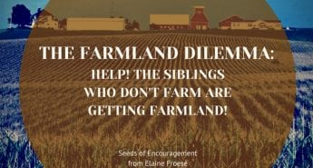 The Farmland Dilemma: Help! The Siblings Who Don't Farm are Getting Farmland!