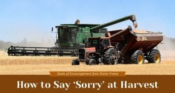 How to Say 'Sorry' at Harvest
