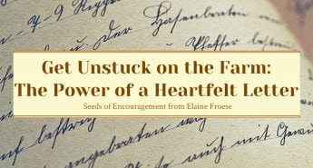 Get Unstuck on the Farm The Power of a Heartfelt Letter