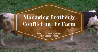 Managing Brotherly Conflict on the Farm