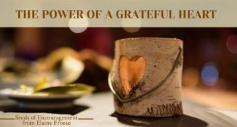 The Power of a Grateful Heart