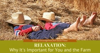 Relaxation: Why It's Important For You and the Farm