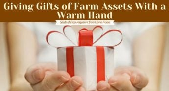 Giving Gifts of Farm Assets With a Warm Hand