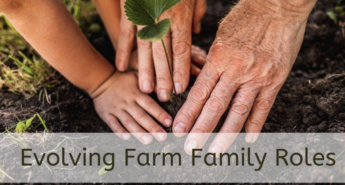 Old and young hands planting seedling symbolizing farm family roles
