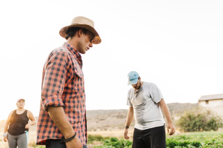 When Farm Brothers Disagree: Advice for the Next Generation of Farm Managers Image