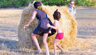 12 Ideas for Summer Fun on the Farm Blog Image