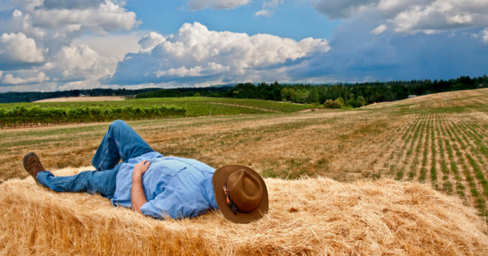 time off the farm mini breaks image